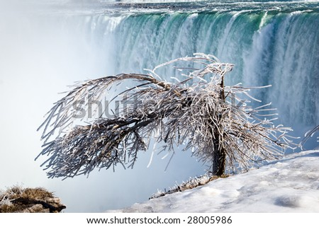 Tree covered by thick layer of iced mist, Niagara Falls Horseshoe on background - stock photo