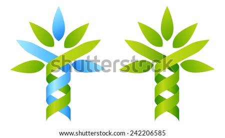 Tree DNA concept of DNA double helix growing into a stylised plant shape. Great for medical, science, research or other nature related use.  - stock photo