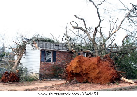 Tree fallen on a house - stock photo