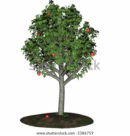 Tree filled with red valentine hearts ripe for the picking. Isolated on a white background. - stock photo