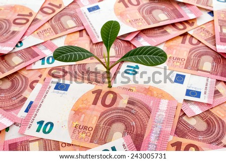 Tree growing from many ten euro bills - stock photo