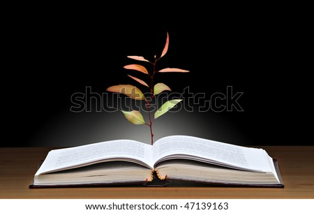 Tree growing from open book