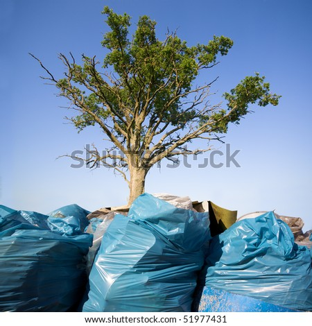 Tree growing from the garbage - stock photo