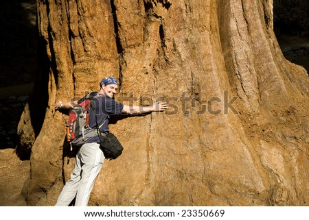 Tree Hugger with Arms Around Redwood in Sequoia National Park - stock photo