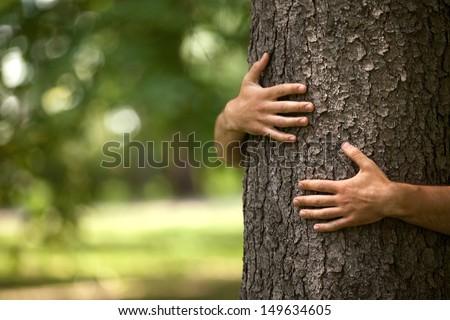 Tree hugging. Close-up of hands hugging tree - stock photo