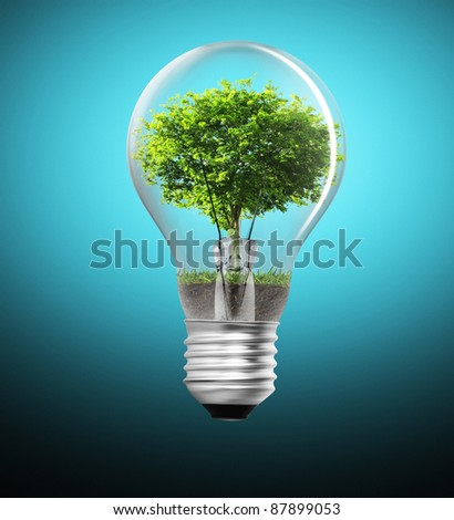 Tree in a light bulb