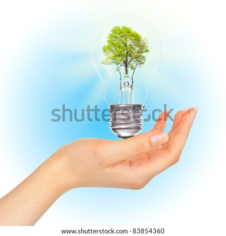 Tree in lamp on hand. Eco concept.