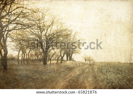 Tree in the autumn field near way. Photo in old image style. - stock photo