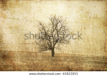Tree in the autumn field. Photo in old image style. - stock photo