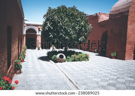 Tree in the courtyard - stock photo