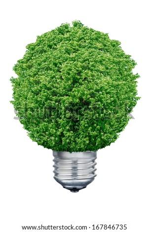 Tree Light bulb isolated on white background. - stock photo