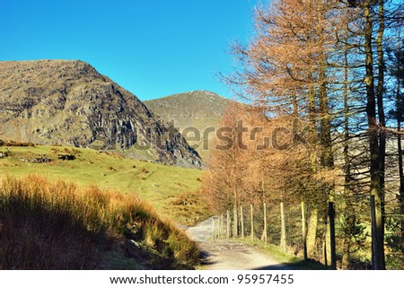 Tree-lined farm lane meandering through fields to rolling mountains in Kentmere, English Lake District. - stock photo