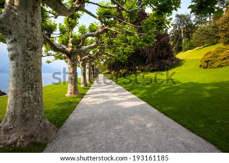 Tree lined, gravel walkway leading into distance in a beautiful garden, along a lake front. Late spring, early summer. Sunlight casting shadows trees across the path and well maintained grass. - stock photo