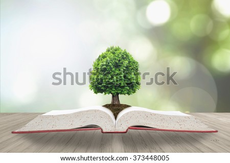 Tree of knowledge/ life growing on soil from root on big archive open textbook on wood table & blur natural green background: Educational resources arbor growth CSR WWD creative conceptual idea
