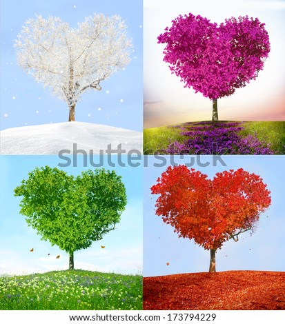 Tree of love in for season - stock photo