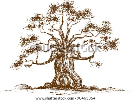 Tree on a white background, raster