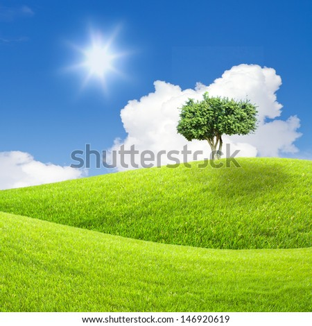 tree on green grass and blue sky - stock photo