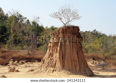 Tree on soil pillar Sao Din Na Noi in Nan province, Thailand, due to soil erosion has produced stranges shapes  - stock photo