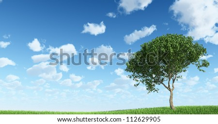 Tree on the grass with Sky Background - stock photo