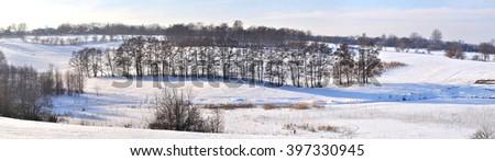 tree on the snow field - stock photo