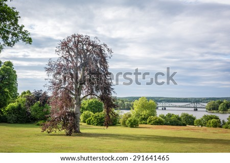 Tree photography. Beautiful summer landscape with bridge - stock photo