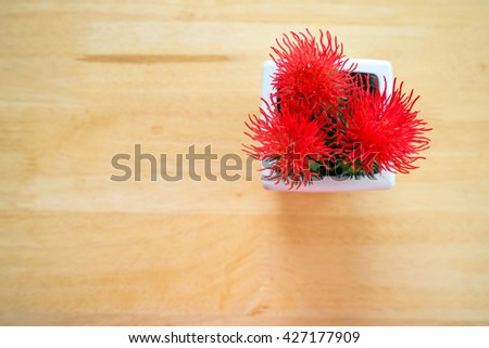 Tree pots decoration on wooden table, Top view - stock photo