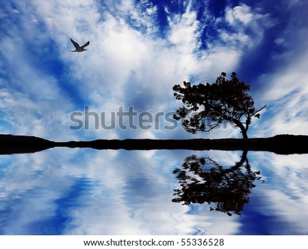 tree reflected in water - stock photo