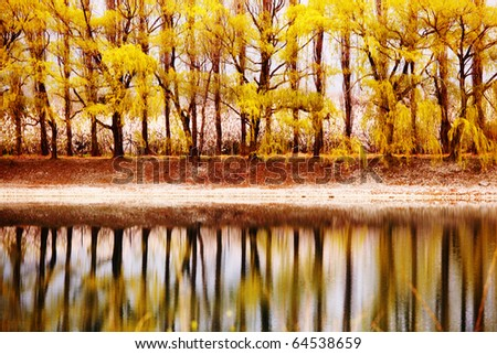 tree reflection in spring mountain - stock photo