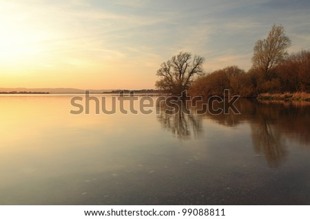 Tree reflections on Loch Leven at Sunset