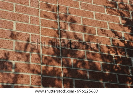 Tree shadow on a brick wall