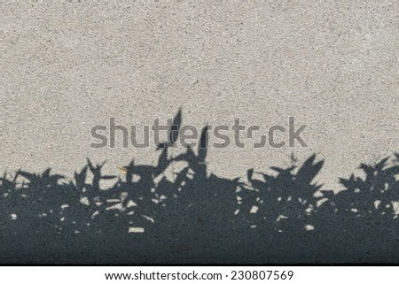 tree shadow on gravel texture as background - stock photo