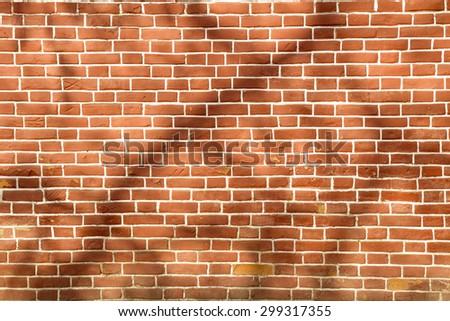 Tree Shadow on Orange Color Grunge brick wall background - stock photo