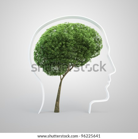 Tree shaped like a human brain inside a head silhouette. - stock photo