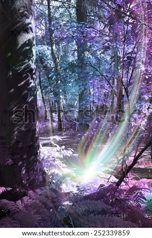 Tree Spirit Birth - deep woodland scene with thick tree trunk on left, with ethereal coloring of blue and purples, and a supernatural light form at the base of the tree depicting a tree spirit birth - stock photo