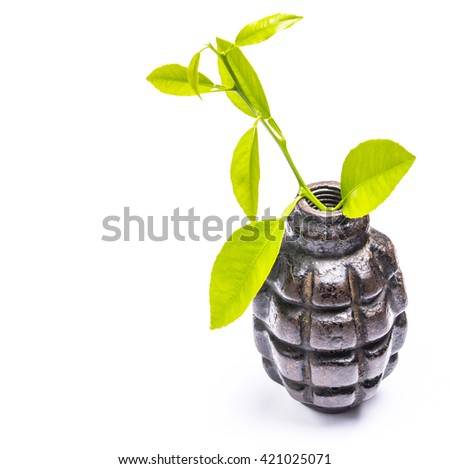 Tree sprout in the shell  fragmentation grenade