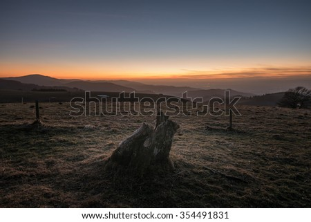 tree stump in German Black Forest landscape at sunset - stock photo