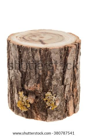 tree stump, isolated on white - stock photo