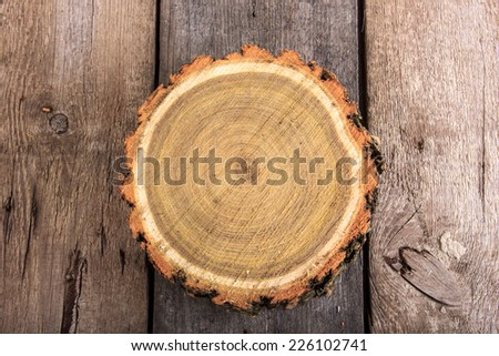 Tree stump round cut with annual rings on wooden background from top view - stock photo