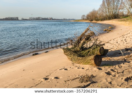 Tree stump washed ashore on the sandy beach of a wide Dutch river. It is a sunny day in the beginning of the winter season. - stock photo