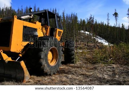 Tree thinning operation at Redfish Lake near Stanley Idaho - stock photo