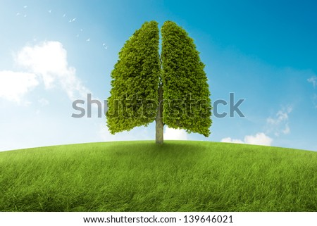 Tree with form of lungs, oxygen for the earth - stock photo
