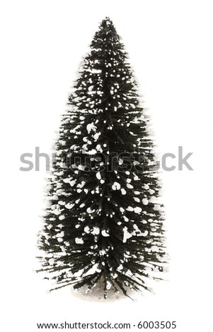 Tree with snow on it, white background