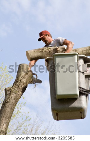 Tree worker cutting down tree.  Log in one hand - chainsaw in the other. - stock photo