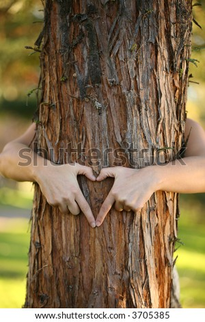 Treehugger.  A nature lover environmentalist with arms wrapped around a pine tree and fingers formed in the shape of a heart. Note:  shallow dof was intentionally used for nice background blur. - stock photo