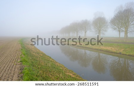 Trees along a foggy canal in spring - stock photo