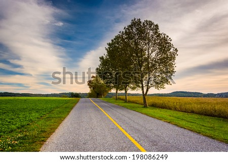 Trees and fields along a road in rural York County, Pennsylvania. - stock photo
