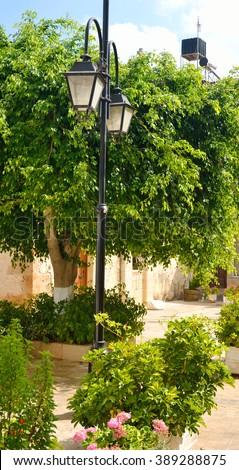 Trees and lantern on street in Malia., Crete, Greece. - stock photo