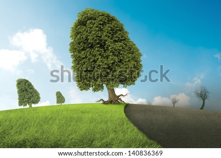 Trees and meadow canceled from the concrete of the urbanization