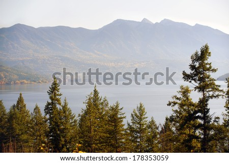 Trees and mountain by the lake