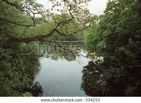 trees and pond - stock photo